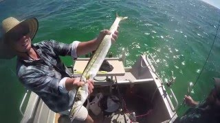 Streaky Bay Australia  City new picture : Streaky Bay fishing trip 2016