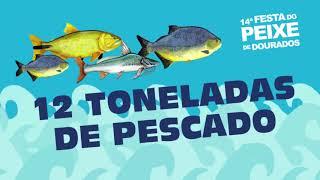 14ª Festa do Peixe – Venda de peixe fresco direto produtor