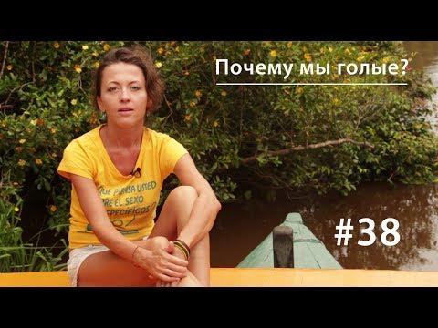 https://www.youtube.com/watch?v=Z21-V4Bygwo