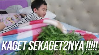Video PRANK RAFATHAR BANGUN DIKELILINGI SAYUR !!!!!!! MP3, 3GP, MP4, WEBM, AVI, FLV Mei 2019