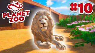 LION HABITAT! - Planet Zoo #10 w/ Vikkstar
