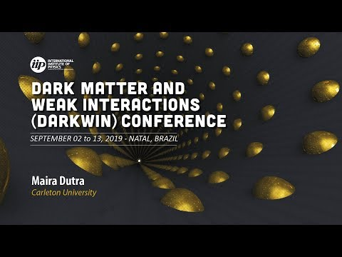 Maira Dutra - Freeze-in production of dark matter through spin-1 and spin-2 portals