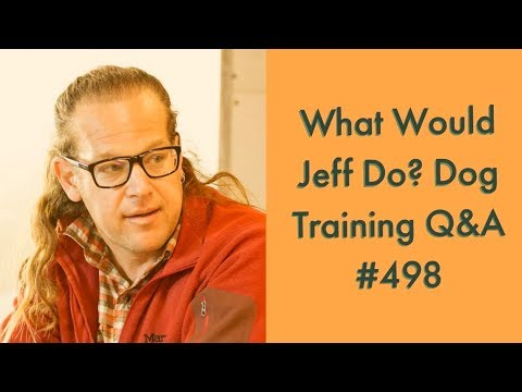 Stop a dog from redirecting | Eliminate Dogs barking | What Would Jeff Do? Dog Training Q & A #498