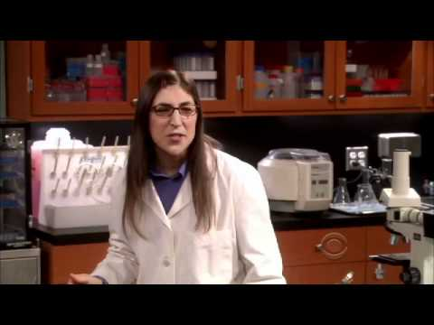 The Big Bang Theory 5.16 Preview