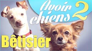 "Video Bêtisier ""Avoir 2 chiens"" - Natoo MP3, 3GP, MP4, WEBM, AVI, FLV Oktober 2017"