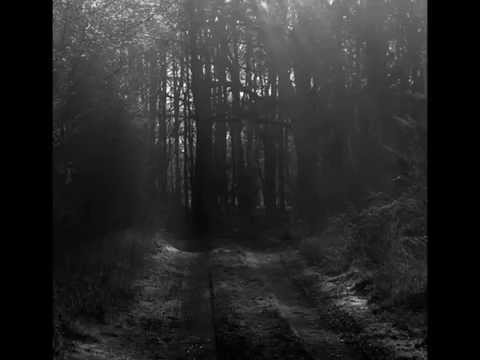 Life in peril - Darkest day (w/LYRICS)