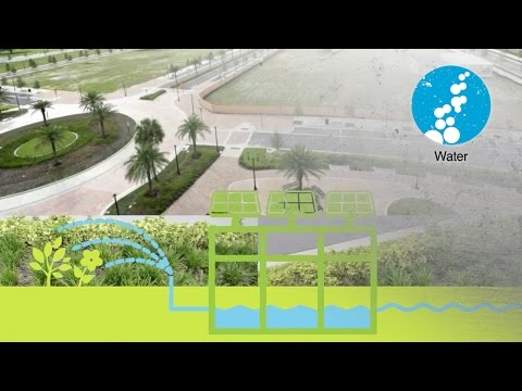 Green Infrastructure & Stormwater Management in Tampa's Encore District Video Thumbnail