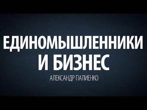 Единомышленники и бизнес. Александр Палиенко. - DomaVideo.Ru