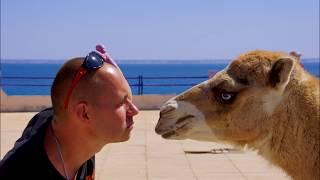 Африка Западная Сахара - Путешествие в страну которой нет