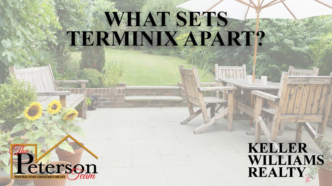 Terminix Is the Key to Pest-Free Living