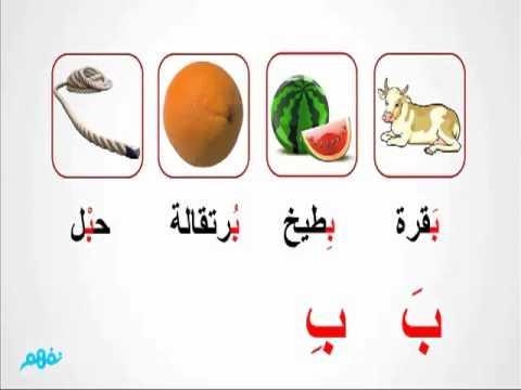 حرف الباء  -  لغة عربية  -  للصف الأول الإبتدائي - موقع نفهم - موقع نفهم