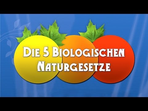 Die 5 Biologischen Naturgesetze &#8211; Die Dokumentation