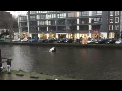 WATCH: 4 Men Jumped Into The Amsterdam River To Save A Woman And A Child
