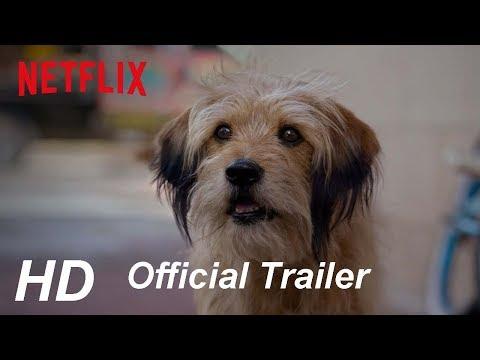 Benji - Official Trailer - (2018) | Netflix
