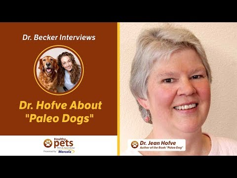 "Dr. Becker Interviews Dr. Hofve About ""Paleo Dogs"""
