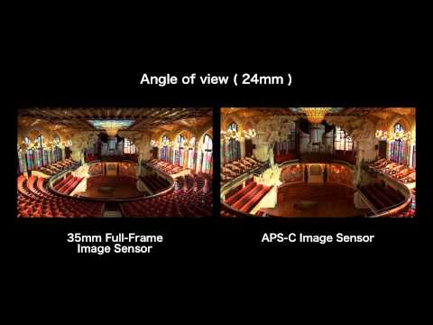 Video Footage Comparison Of The Sony NEX-VG900