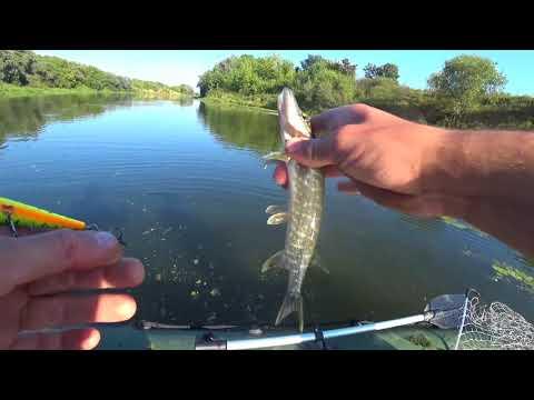 ока шилово рыбалка видео