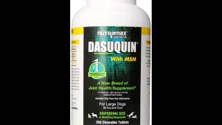 Dasuquin: Great, Fast Pain Relief for Dogs!