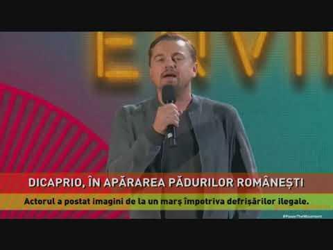 Leonardo DiCaprio apără pădurile din România