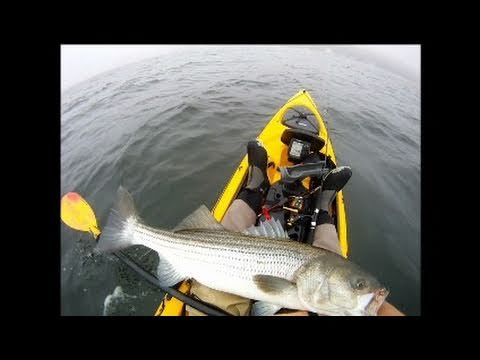 Striped Bass fishing with tube and worm