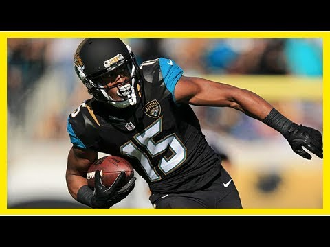 NFL free agency 2018: Allen Robinson headed to Bears, report says