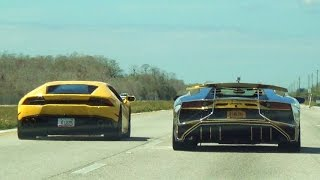 Download Lagu BullFest 2016 80+ lambos 120 miles Supercars BLASTING Adrenaline Rush! Lamborghini VS Lamborghini Mp3