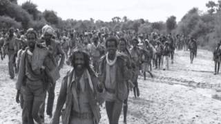 A Tribute To Our Eritrean Martyrs - Sala Jeganu