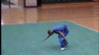 Video 2007 US Wushu Team Trials Jesse Lou - CQ MP3, 3GP, MP4, WEBM, AVI, FLV Juni 2018