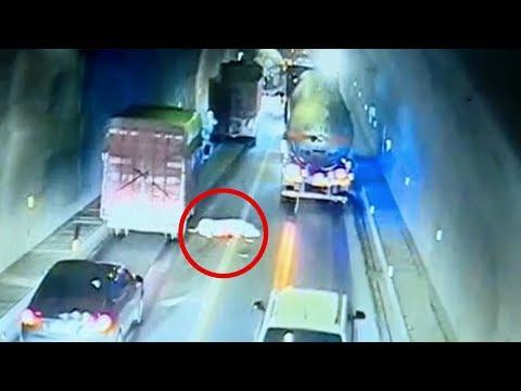 العرب اليوم - شاهد: الخنزير الهارب يتسبب في فوضى عارمة داخل نفق في الصين