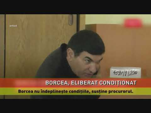Cristian Borcea, eliberat condiționat din închisoare
