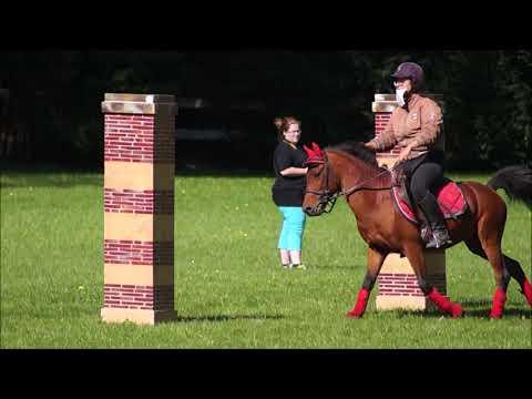Extreme cowboy race Hennebont 2017