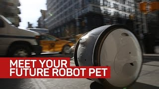 Nonton Gita the robot followed me around New York to carry my stuff Film Subtitle Indonesia Streaming Movie Download