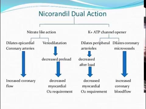 Angina Treatment-NICORANDIL Mechanism of action