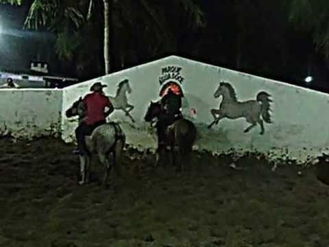 Vaqueiro Rondinele em Calberto trairi