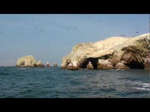 MIRADOR ADVENTURES – A Paracas Nemzeti Park és a Ballestas-szigetek