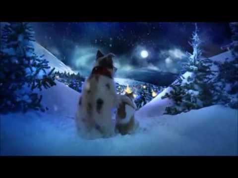 Feliz Natal para todos☆ ★   ★    *   * ⋰˚☆  *   * ⋰˚☆☆ ★   ★ 🎀🎄💗🎅💗🎄🎀  ☆ ★   ★...
