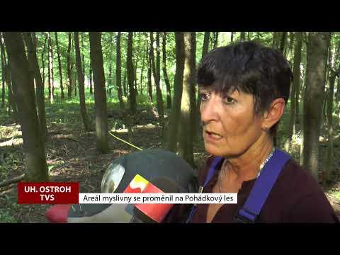 TVS: Uherský Ostroh - Pohádkový les