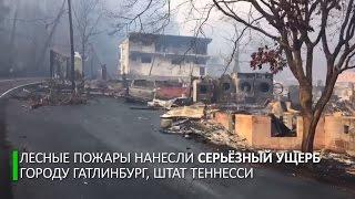 Лесные пожары в Тенесси: жители бегут из охваченного огнем города