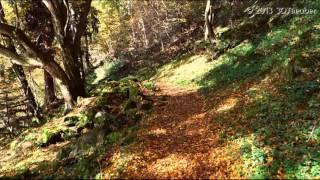 Mahabharat (Theme Instrumental)