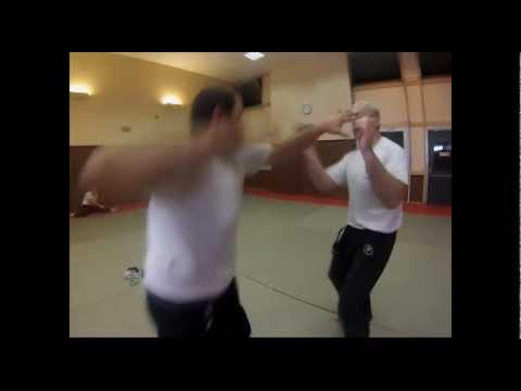 KRAV MAGA combat souple