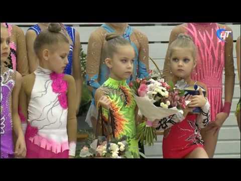 Стартовало первенство области по художественной гимнастике