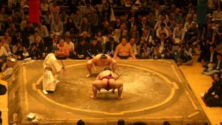 Nonton Sumo Wrestling 2014 05 21 Tokyo Japan Film Subtitle Indonesia Streaming Movie Download