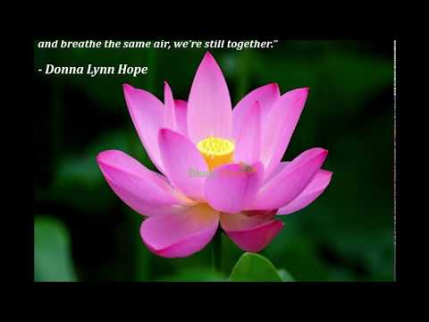 Family quotes - Relationship Quotes  Inspiring Quotes About Relationship