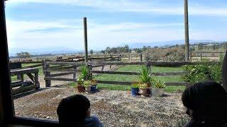 Yarra Valley Australia  city images : Yarra Valley Tour - Chocolaterie, Dairy & Healesville - Australia Travel Vlog
