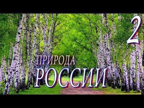Природа. Природа России.(2 выпуск)