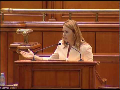 Parlamentul României: Legea amnistiei fiscale