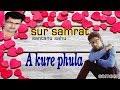 A kure phula santanu sahu old sambalpuri song super hit odia album