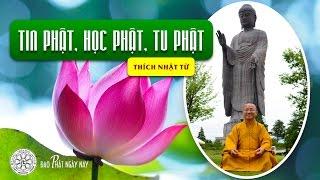 Tin Phật, học Phật và tu Phật - THÍCH NHẬT TỪ - 2011