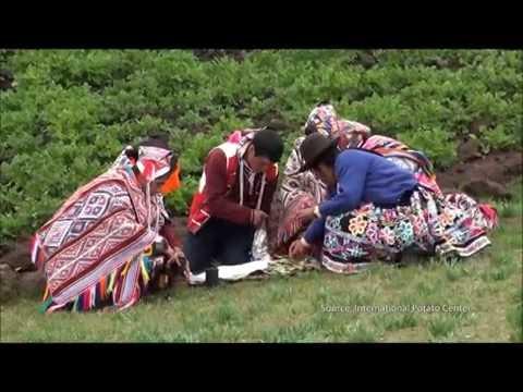 Peru Climate III video