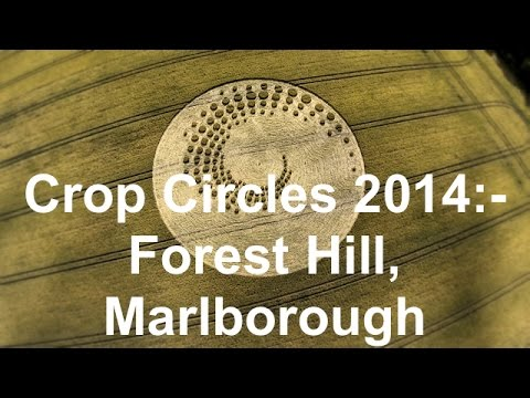 Crop Circles 2014 – Forest Hill, nr Marlborough
